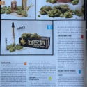Cannabis Now Magazine Issue 11 Medicated Toothpicks Review