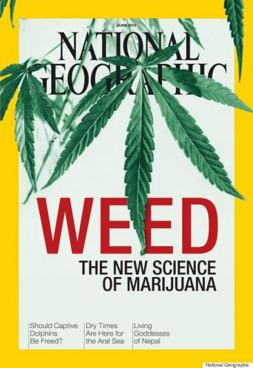 National Geographic – Science Seeks to Unlock Marijuana's Secrets